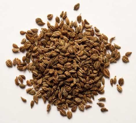 Carom Seeds/Thymol Seeds (Ajavain, Ajwain)