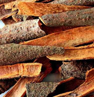 Cinnamon Bark (Dalchini, Kalmi Taj)