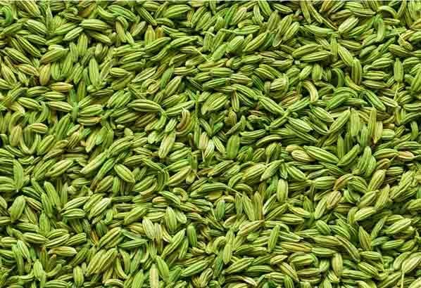 Fennel Seeds (Moti Saunf)