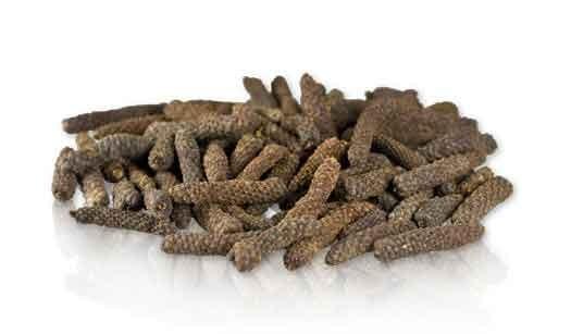 Long Pepper(Pippali, Pippli, Landi Pipal)