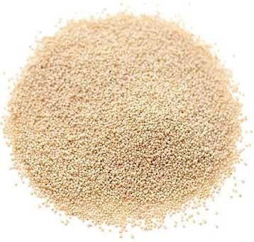 Poppy Seeds (Khas Khas,Khus khus, Posta Dana)