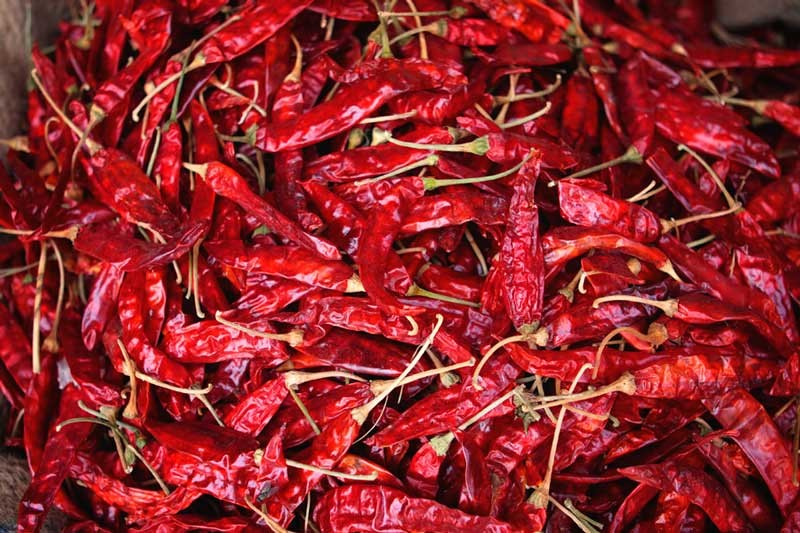 Dry Red Chilli/Red Chili Pepper (Sukhi Lal Mirch)