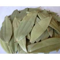 Bay Leaf (Tej Patta, Tejpat, Tamalpatra)