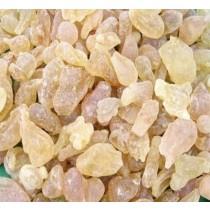 Desi Katira(Kathila Gond, Tragacanth Gum)