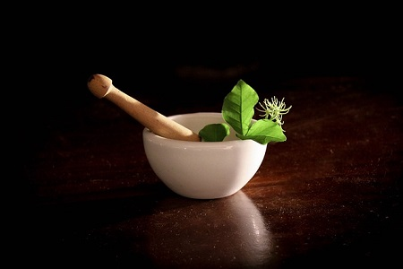 Herbs An Efficient Way To Maintain A Healthy And Active Style Of Living