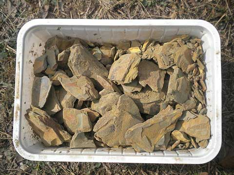 Multani Mitti A Multipurpose Clay Substance At Home