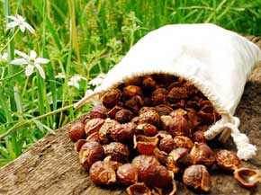 Reetha-Soap Nuts